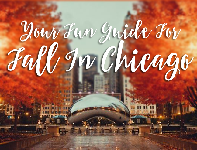 The Goodness Guide To Fall In Chicago 100 Giveaway